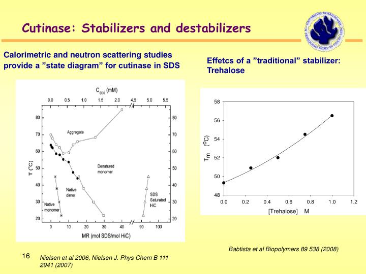 Cutinase: Stabilizers and destabilizers