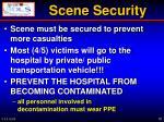 scene security1