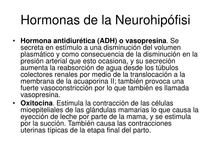 Hormonas de la Neurohipófisi