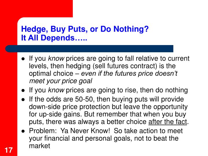 Hedge, Buy Puts, or Do Nothing?
