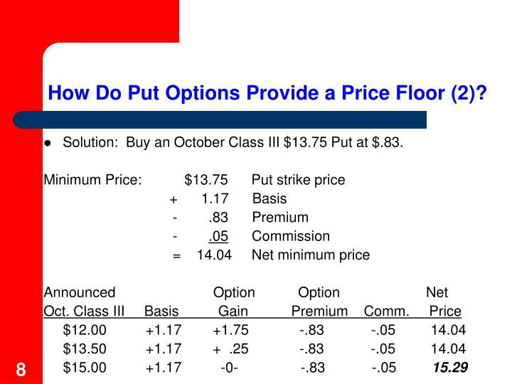 How Do Put Options Provide a Price Floor (2)?
