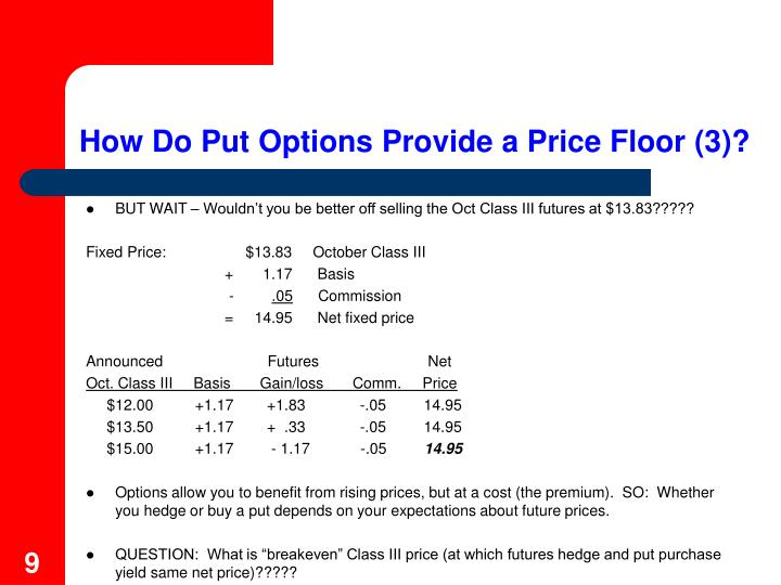 How Do Put Options Provide a Price Floor (3)?