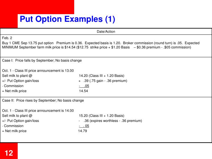 Put Option Examples (1)