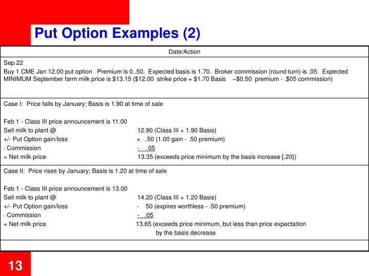 Put Option Examples (2)