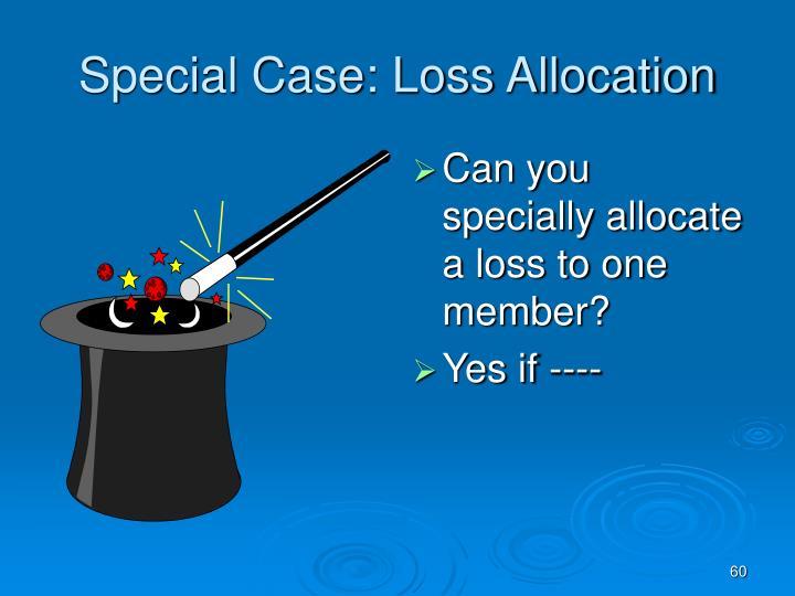 Special Case: Loss Allocation