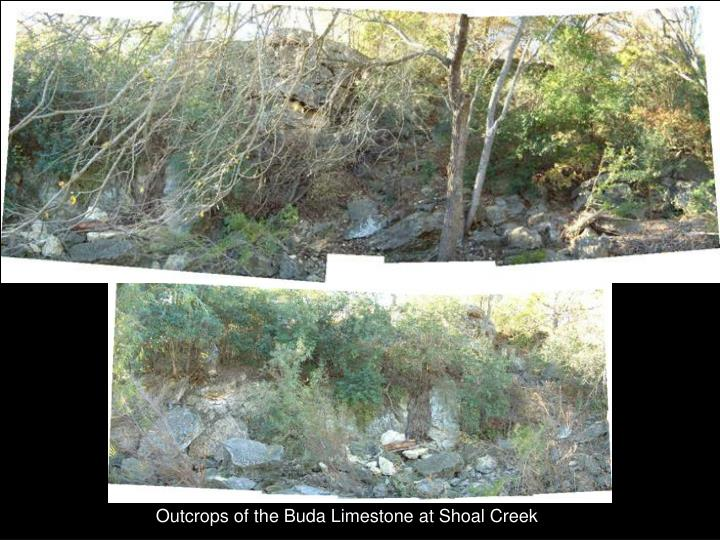 Outcrops of the Buda Limestone at Shoal Creek