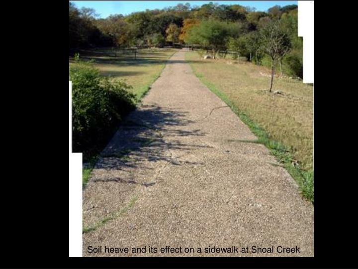 Soil heave and its effect on a sidewalk at Shoal Creek