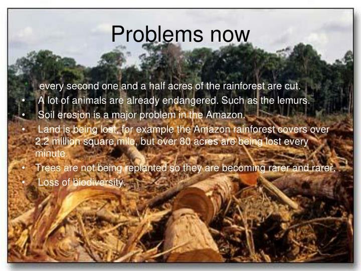 Amazon Problem