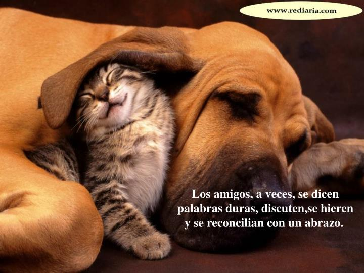 Los amigos, a veces, se dicen palabras duras, discuten,se hieren y se reconcilian con un abrazo.