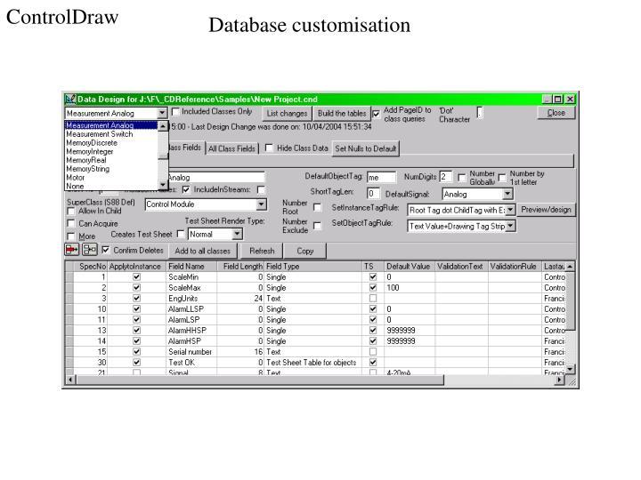 Database customisation