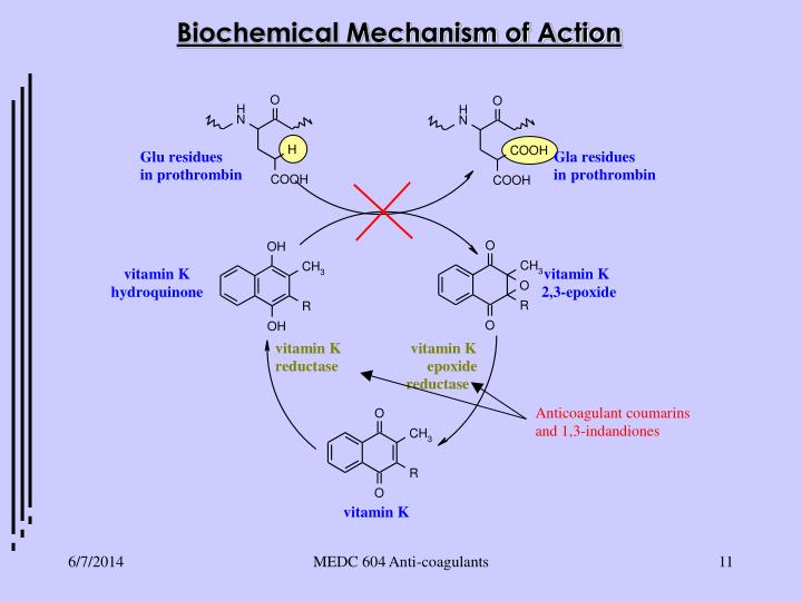 Biochemical Mechanism of Action