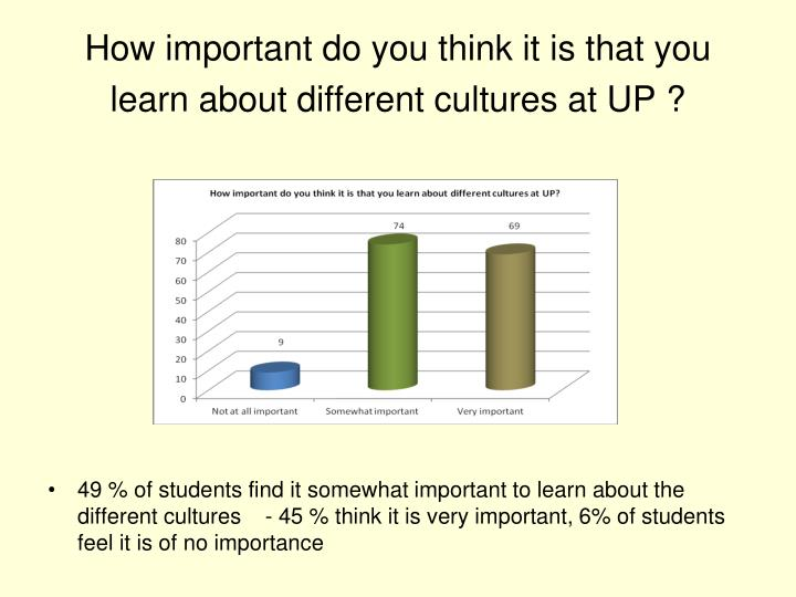 How important do you think it is that you learn about different cultures at UP ?