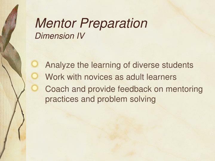 Mentor Preparation