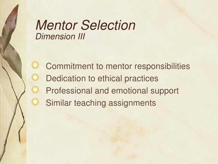Mentor Selection