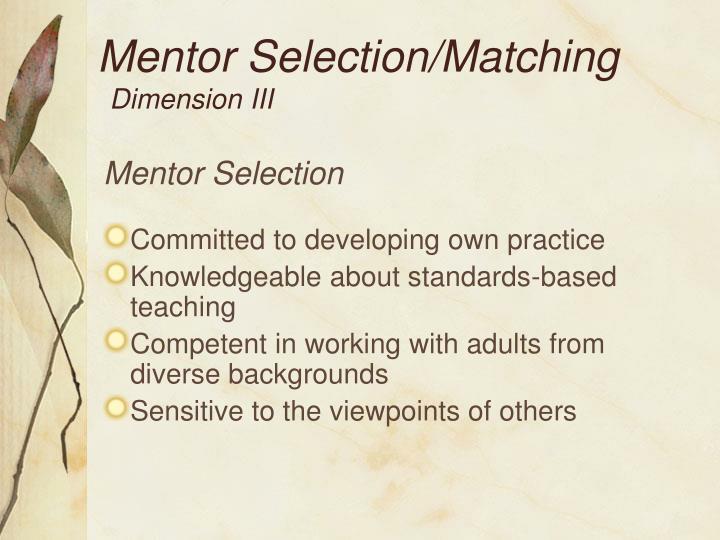 Mentor Selection/Matching