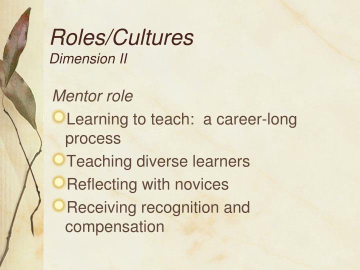 Roles/Cultures