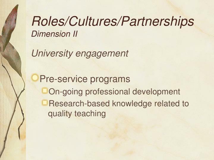 Roles/Cultures/Partnerships