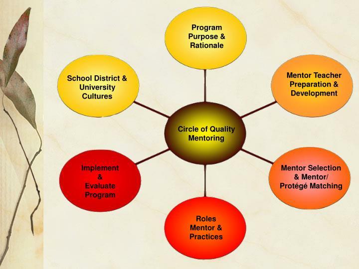 Program Purpose & Rationale