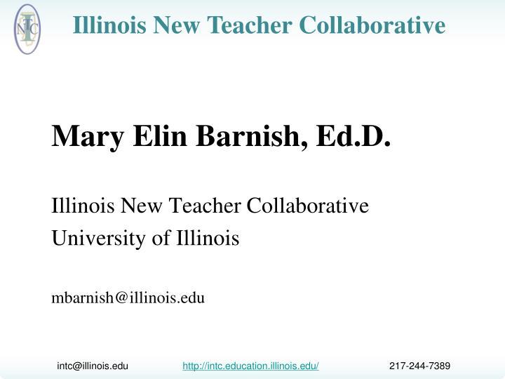 Mary Elin Barnish, Ed.D.