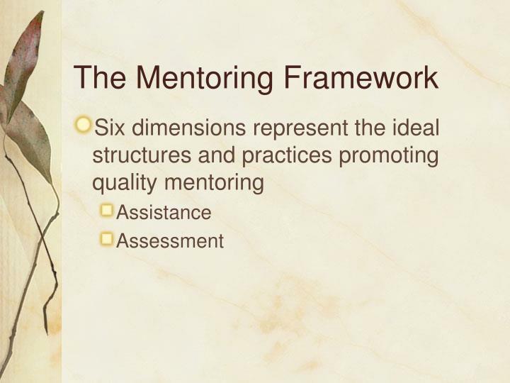 The Mentoring Framework