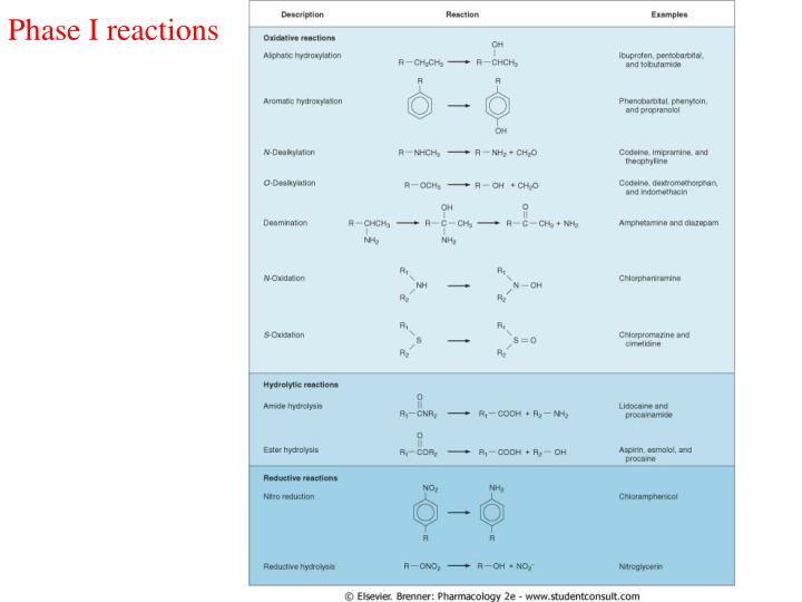 Phase I reactions