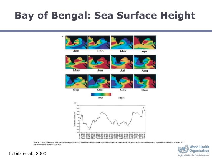 Bay of Bengal: Sea Surface Height