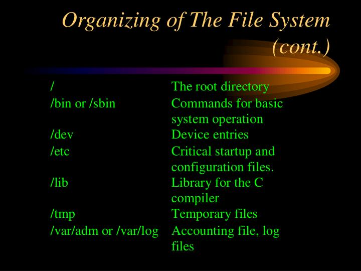Organizing of The File System (cont.)