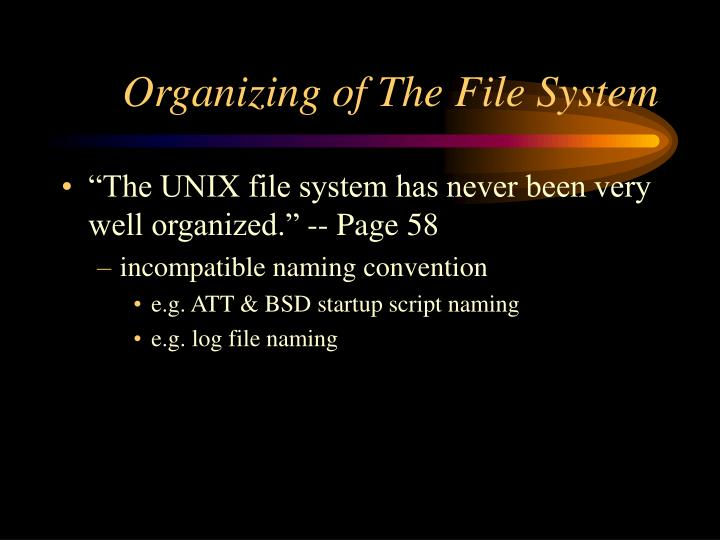 Organizing of The File System