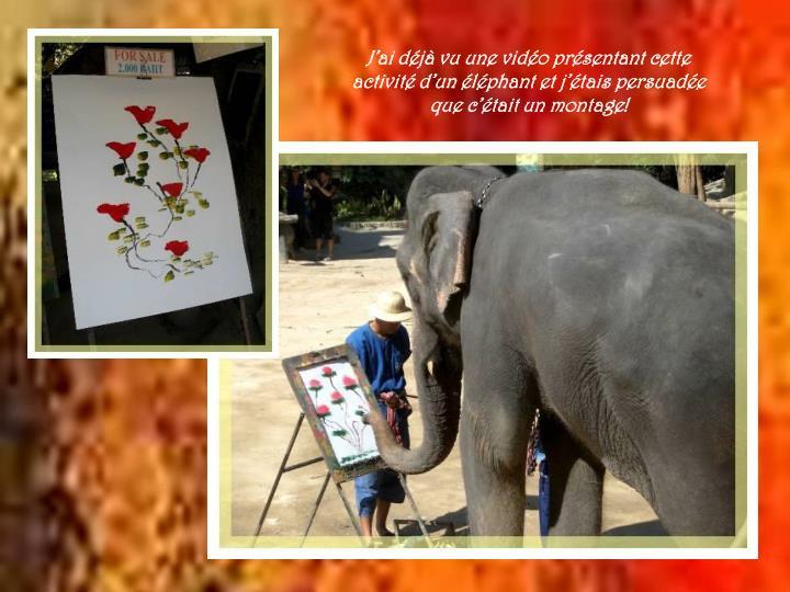 J'ai déjà vu une vidéo présentant cette activité d'un éléphant et j'étais persuadée que c'était un montage!