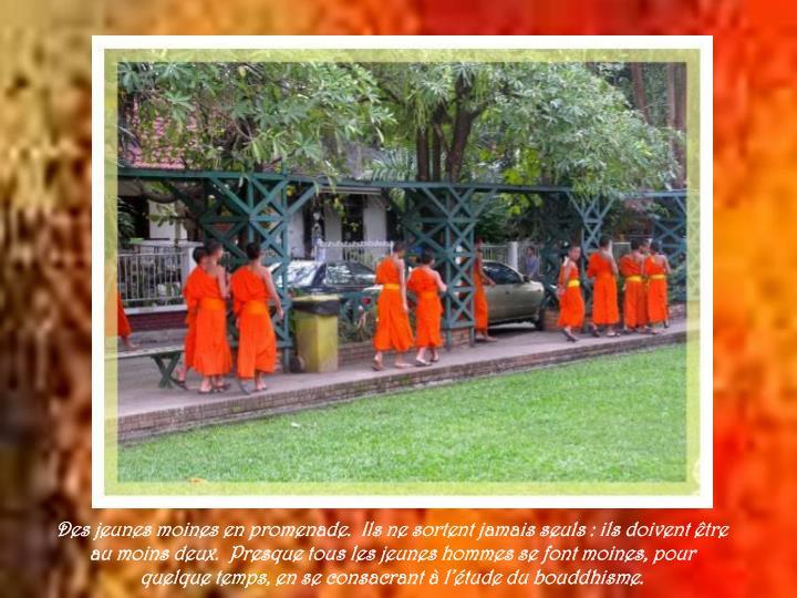 Des jeunes moines en promenade.  Ils ne sortent jamais seuls : ils doivent être au moins deux.  Presque tous les jeunes hommes se font