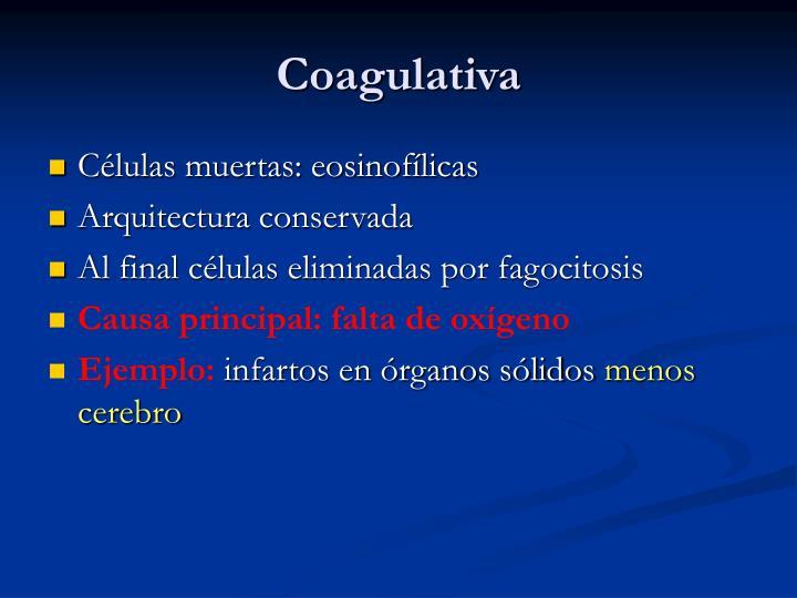 Coagulativa