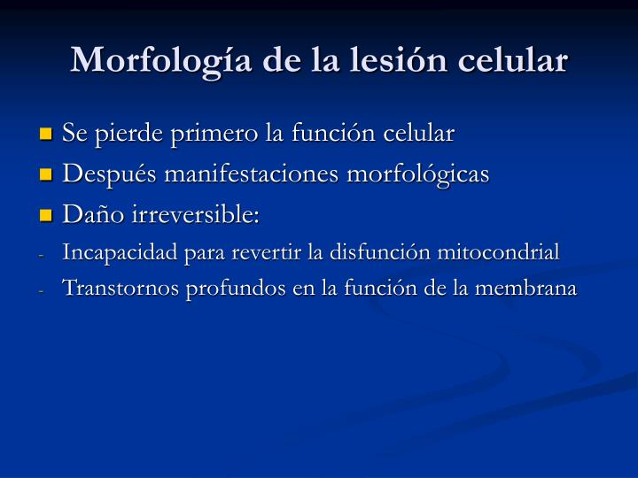 Morfología de la lesión celular