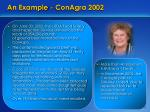 an example conagra 2002