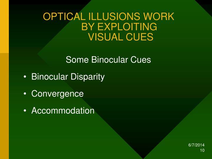 OPTICAL ILLUSIONS WORK