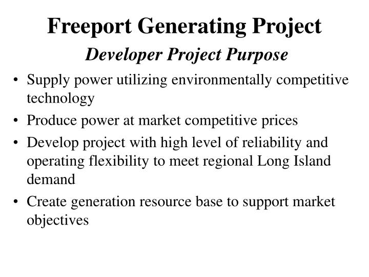 Freeport generating project developer project purpose