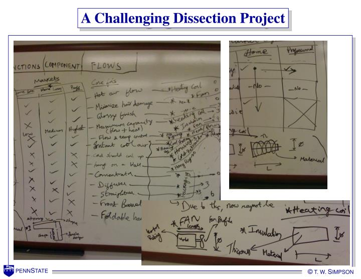 A Challenging Dissection Project