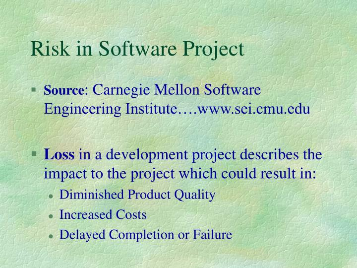 Risk in Software Project
