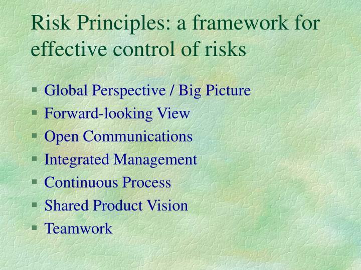 Risk Principles: a framework for effective control of risks