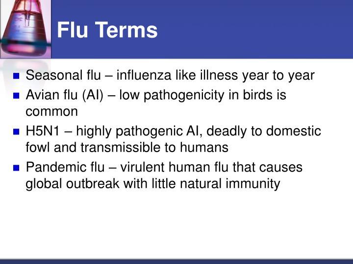 Flu Terms