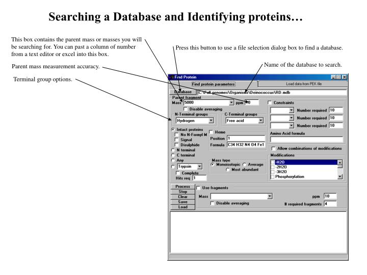 Searching a Database and Identifying proteins…