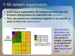 bit stream organization