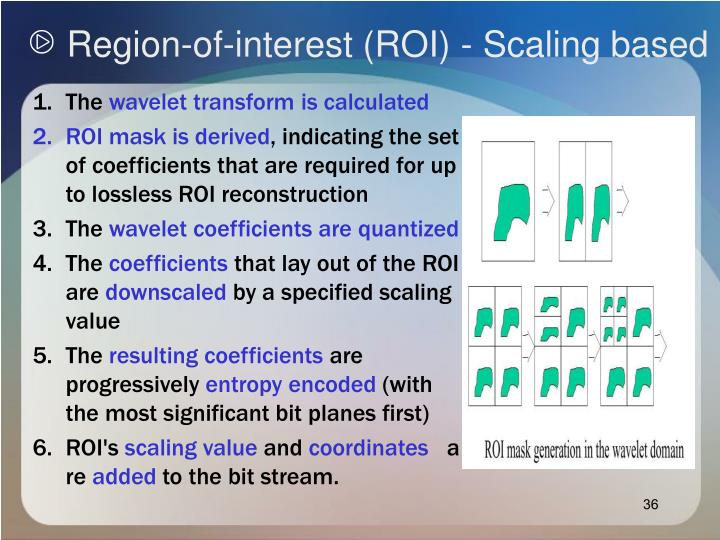 Region-of-interest (ROI) - Scaling based
