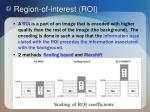region of interest roi