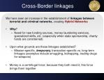 cross border linkages