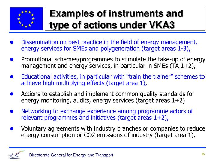 Examples of instruments and type of actions under VKA3