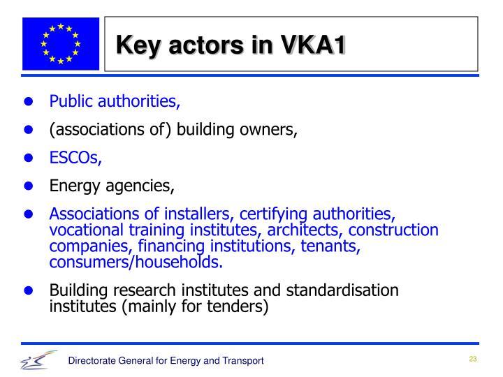 Key actors in VKA1