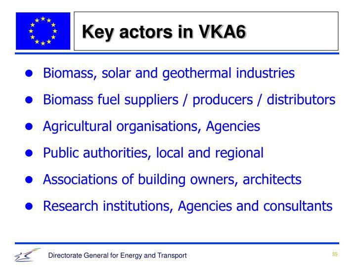 Key actors in VKA6