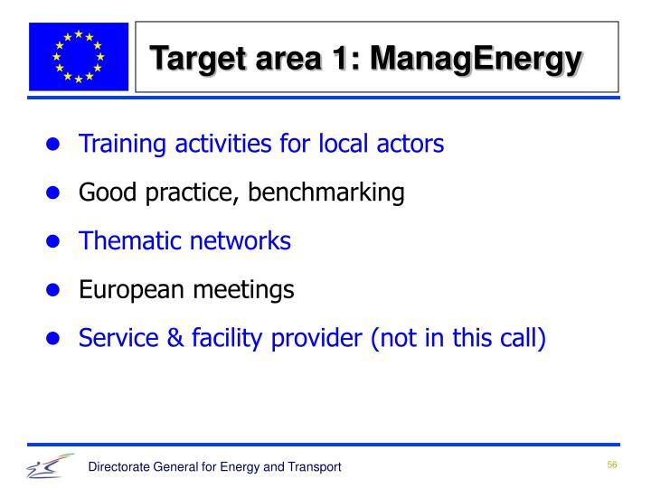 Target area 1: ManagEnergy