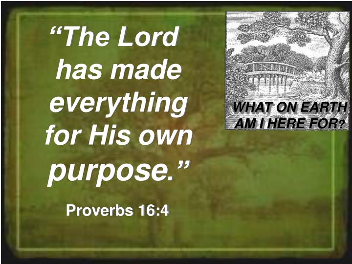 """""""The Lord  has made everything for His own"""