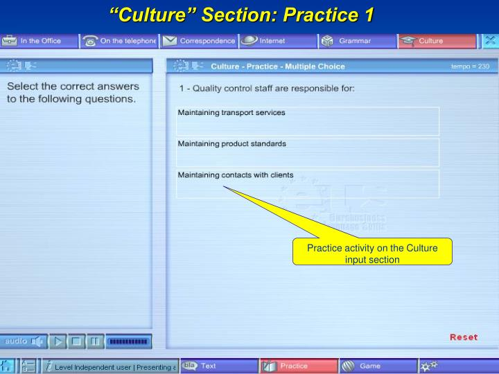 """Culture"" Section: Practice 1"